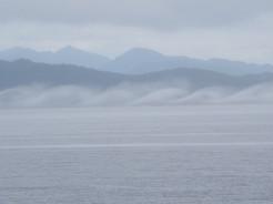 Fog Formations