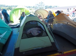 Tent City with comfy bedding
