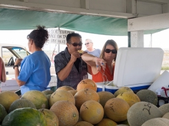 Melon Tasting at Green River