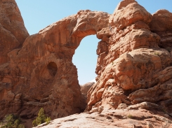 Arches Windows