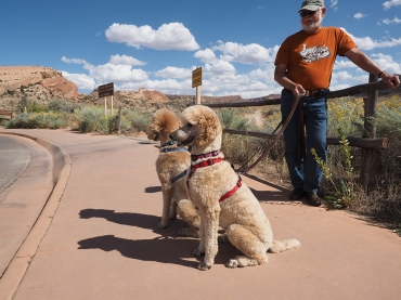 Arches National Park Visitors
